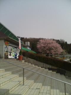 上河内サービスエリアパート2